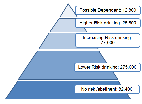 Alcohol Risk Pyramid, Somerset